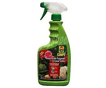 Compo Insecticida contra el pulgón, para uso doméstico y jardineria exterior doméstica Spray de 750 ml
