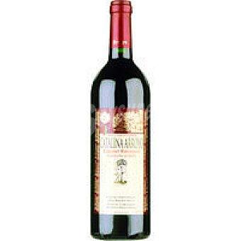 Catalina Arroyo Vino Tinto Cabernet Botella 75 cl