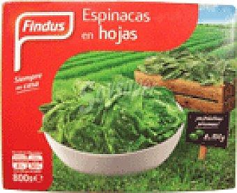Findus Espinacas hoja 800 GRS