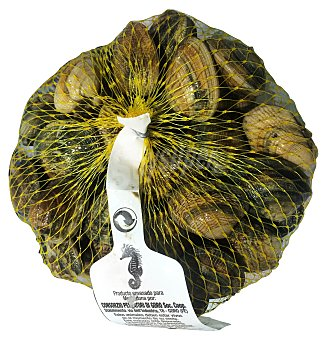 Almeja Fina Fresca (sólo entregas viernes y sábado) Malla 1 kg