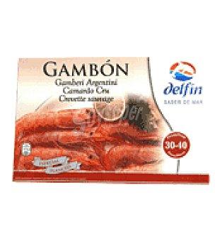 Delfín Gambon grande 1 kg