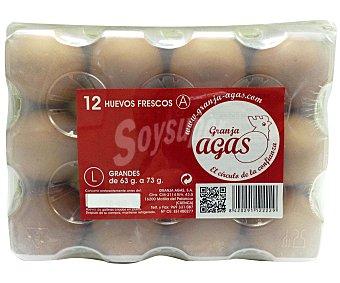 Granja Agas Huevos clase L 12 Unidades