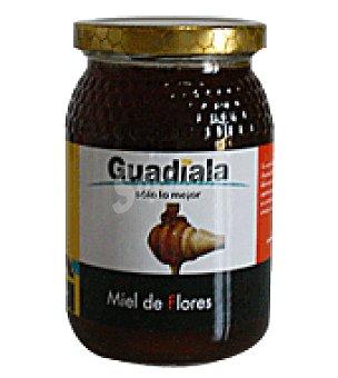 Guadiala Miel 500 g