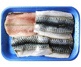 Pescado Fresco Filete de caballa 400 Gramos