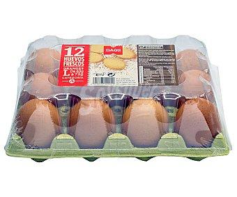 Dagu Huevos frescos de categoria A y clase L 12 uds