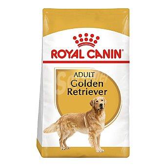 Royal Canin Golden retriever adult pienso para perros adultos a partir de 15 meses raza Golden Retriever Bolsa 12 kg