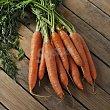 Zanahoria Manojo de 750 g Carrefour