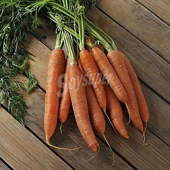 Carrefour Zanahoria Manojo de 750 g