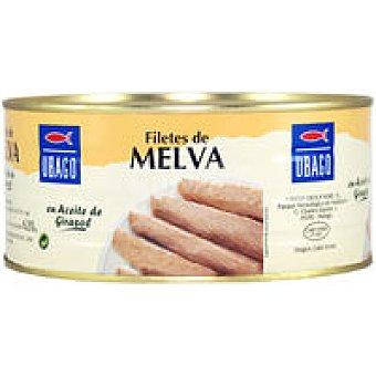 Ubago Filete de melva en aceite Lata 1 kg