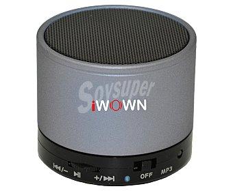 IWOWN Mini altavoz por batería 1 unidad