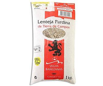 Vega Bañezanas Lenteja pardina 1 kg