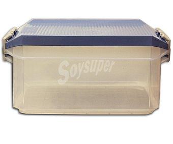 Tatay Caja de ordenación multiusos con tapa de pláctico color azul lavanda, 14 litros 1 Unidad