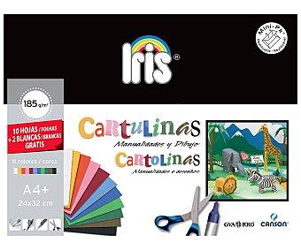 Canson Paquete con 10 cartulinas de diferentes colores y 2 cartulinas de color blanco de 185 gramos y de 24x32 centímetros (din A4+) 1 unidad