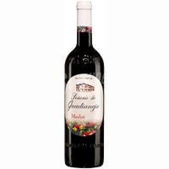 Señorío de Guadianeja Vino Tinto Merlot Botella 75 cl
