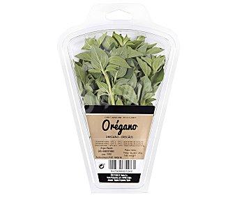 Auchan Estragón 15 gramos
