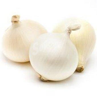 Cebolla blanca de Castilla León al peso, compra mínima