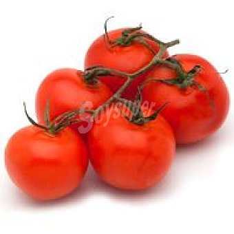 Tomate en rama 500 g