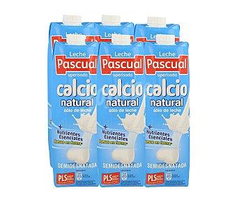 Pascual Calcio Leche Semidesnatada Pack 6 brick x1l