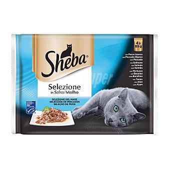 Sheba Comida húmeda para gatos adultos selección pescado en salsa 4 tarrina x 85 gr