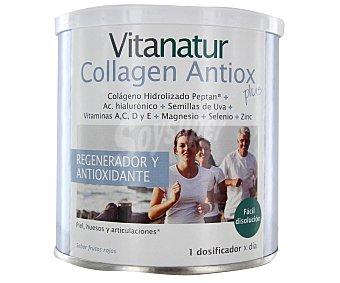 VIANATUR Complemento alimenticio regenerador y antioxidante de fácil disolución 180 gramos
