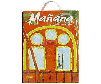 MAÑANA Vino Tinto Bag In Box 5 Litros