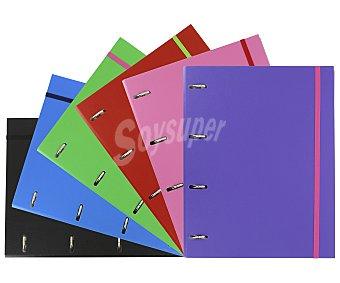Grafoplás Carpeta de cartón forrado de tamaño DIN A4, con 4 anillas metálicas de 25 milímetros, cuatro rados y cierres de goma + recambio de 120 hojas de con cuadricula de 4x4 milímetros GRAFOPLAS. Este producto dispone de distintos modelos o colores. Se venden por separado SE SURTIRÁN SEGÚN EXISTENCIAS 90 gramos