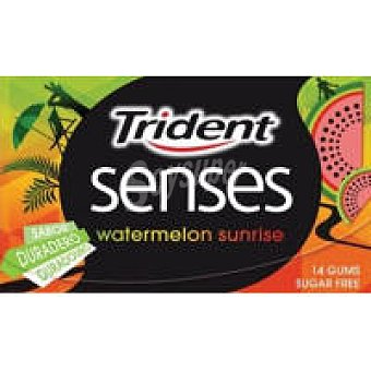 Trident Chicle Watermelon Paquete 27 g