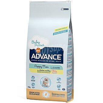 Advance Affinity Alimento de alta gama para cachorros de raza grande rico en pollo y arroz Maxi Puppy Bolsa 15 kg