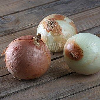Cebolla a granel Bolsa de 1000.0 g.