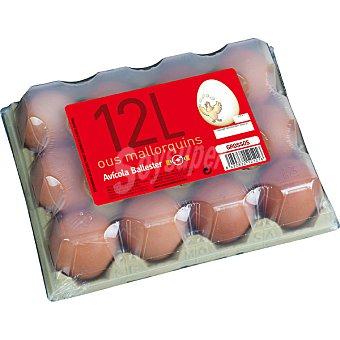 MALLORQUINS Huevos morenos clase L Estuche 1 docena