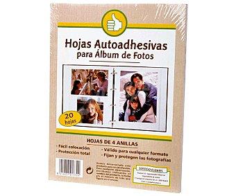 Productos Económicos Alcampo Bolsa de 20 hojas de recambio para álbumes de fotos alcampo