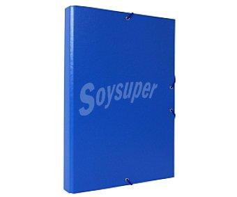 Auchan Clasificador de tamaño folio de cartón forrado en color azul y con 12 separadores auchan