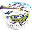 Yogur griego natural 2% extra sin lactosa Envase 150 g Mevgal