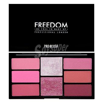 Freedom Paleta coloretes correctores Pink 1 ud