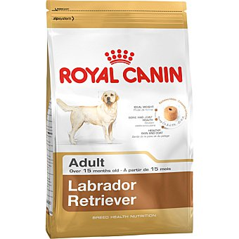 ROYAL CANIN ADULT Labrador Retriever alimento completo especial para perros desde los 15 meses Bolsa 12 kg