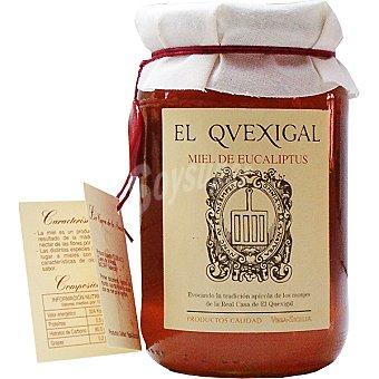 EL QUEXIGAL Miel de eucalipto Frasco 500 g