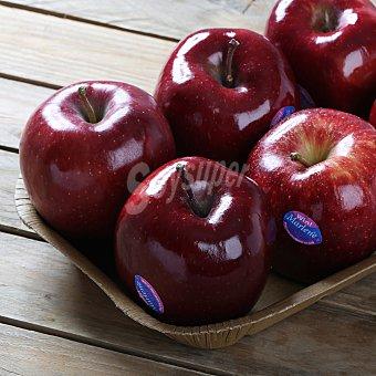 Manzana roja Bandeja de 1000.0 g.