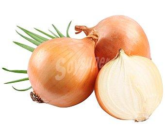 Auchan Producción Controlada Cebollas Bio Malla de 1 kg