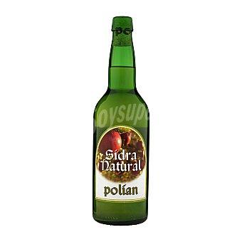Polian Sidra natural Botella 700 ml