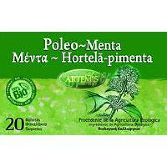 Artemis Bio Infusión de menta poleo Bio Caja 28 g
