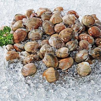Almeja marinera Malla. 500 g