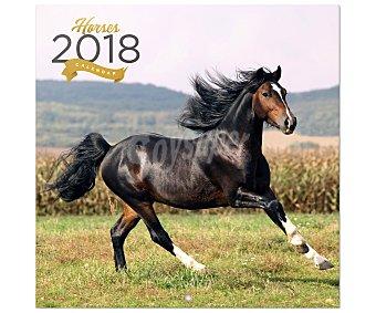ERIK Calendario 2018 con medidas de 30x30 centímetros de caballos, ERIK.