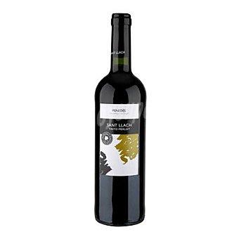 Sant Llach Vino D.O. Penedés tinto Merlot - Exclusivo Carrefour 75 cl