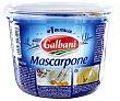 Queso mascarpone 500 g Galbani
