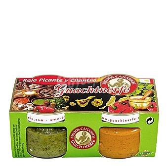 Guachinerfe Pack Mojo rojo picante y cilantro Pack de 2x120 g