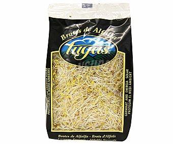 Tugas Brotes Germinados de Alfalfa Bolsa 150 g