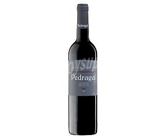 PEDRAGAL Vino tinto con denominación de origen Valdeorras Botella de 75 cl