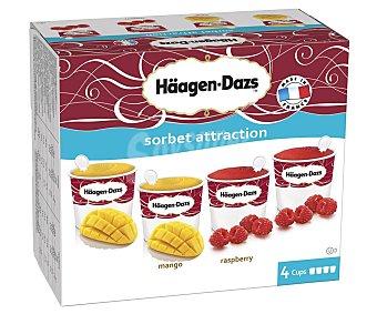 Häagen-Dazs Tarrinas de helado de sorbete de mango (2) o frambuesa (2) sorbet attraction Caja 4 tarrinas x 100 ml