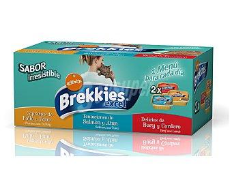 Brekkies Affinity Alimento para gatos de pollo y pavo, buey y cordero y salmón y atún Pack de 6 unidades de 100 gramos