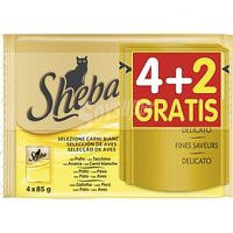 Sheba Mpack aves Gelatina 4+2